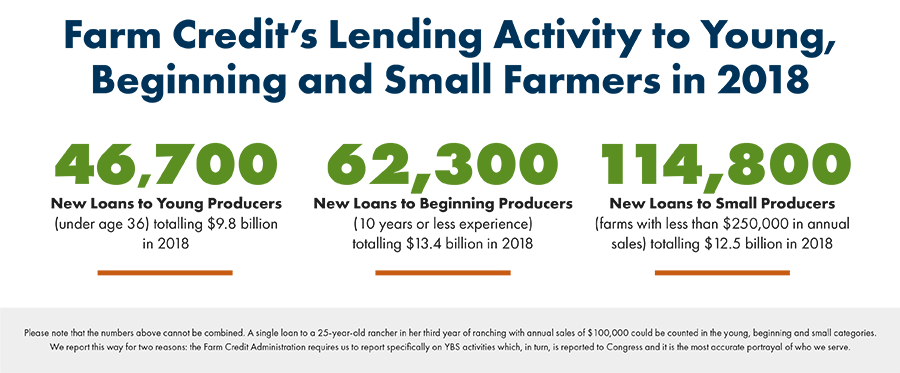 Lending Activity for Young, Beginning & Small Farmers