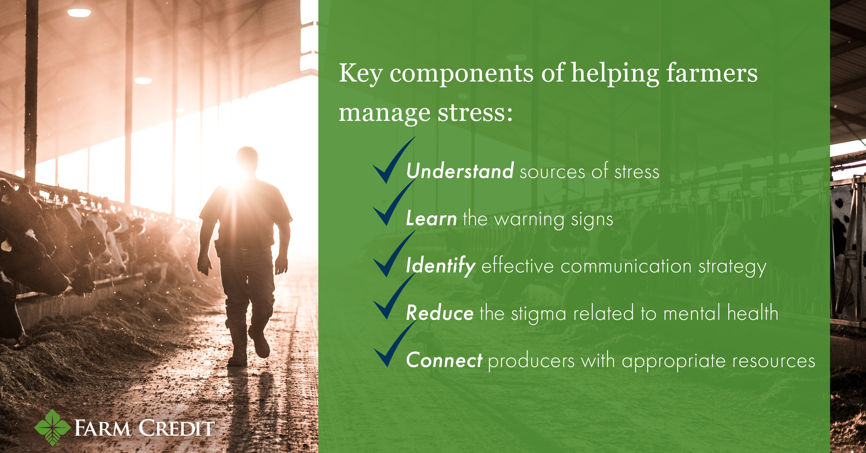 infographic of program identifying stress