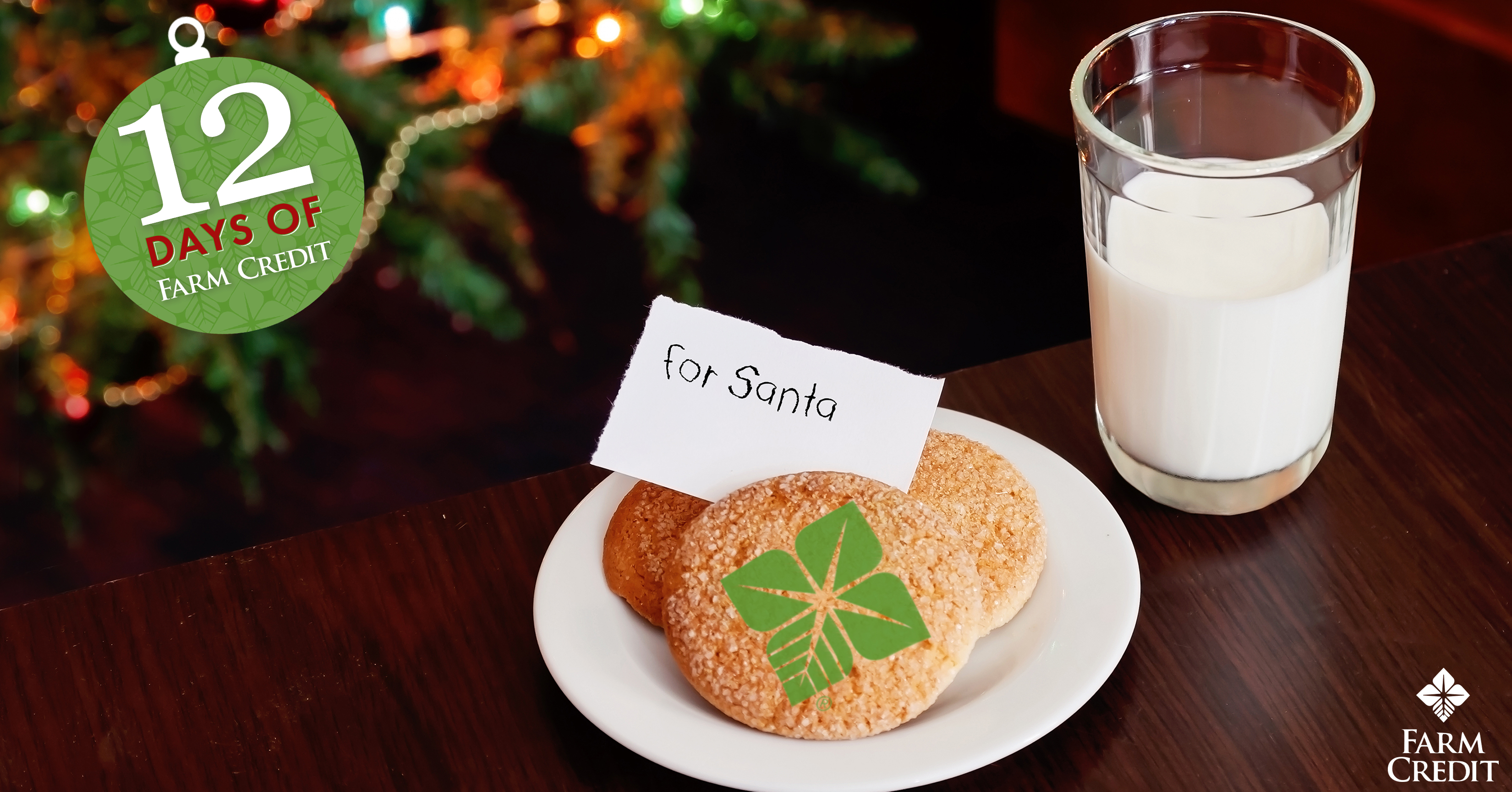 milk for santa's cookies on table with christmas tree