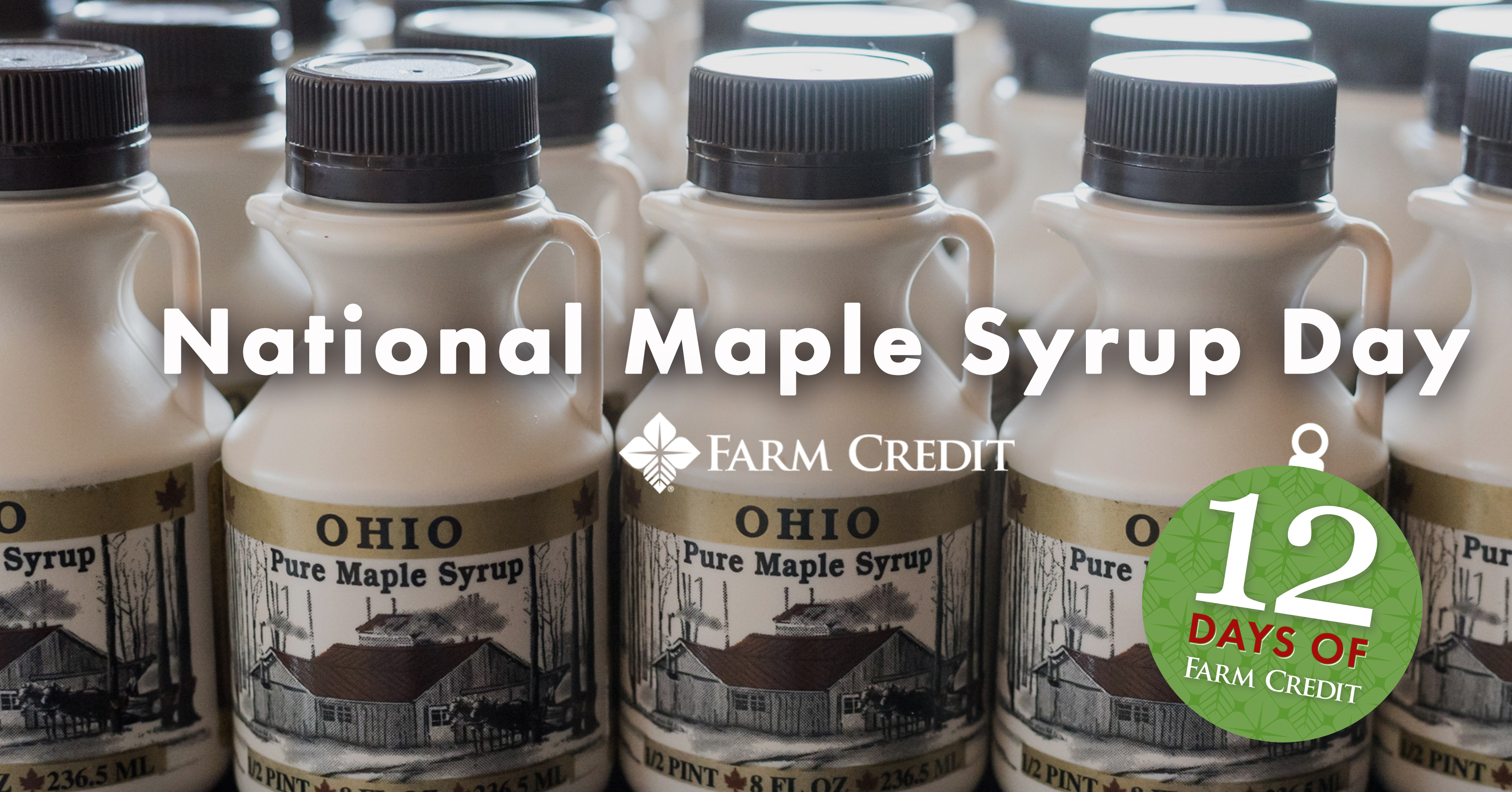 National maple syrup day graphic text on screen syrup bottles ohio